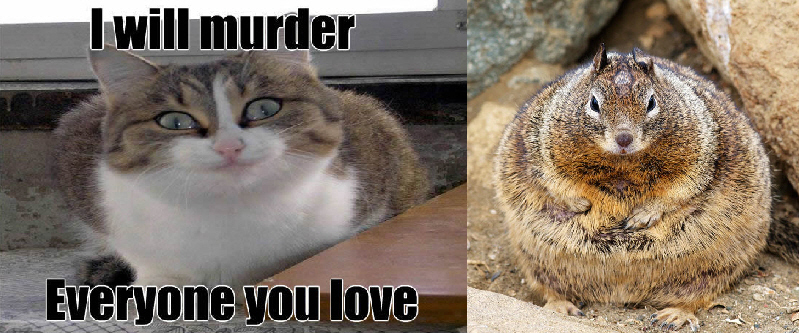 Creepy Cat and Fat Squirrel